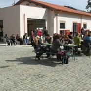 """Social trekking: """"Da Rebibbia al parco di Aguzzano a piede libero"""""""